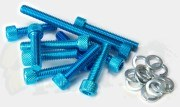 Anodised Engine Transmission Case Bolts - Aerox/ Minarelli