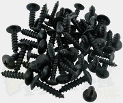Black Powdercoated Self Tapping Screws
