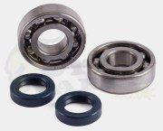 Jasil Standard Bearing & Seal Kit - Ludix/ SF3 50cc