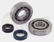 Jasil Standard Bearing & Seal Kit - Speedfight 50cc 04on