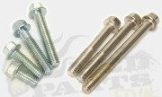 M6 Flanged Bolts/ Screws
