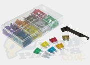Standard Blade Fuse Kit- 100 Pieces